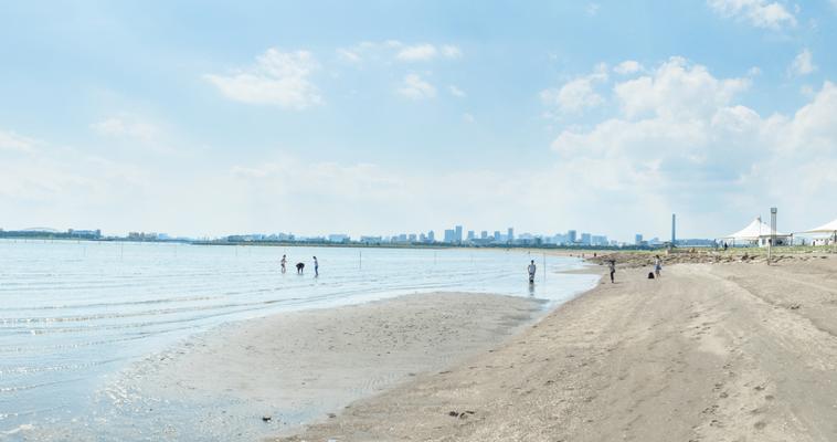 ゴミ 粗大 江戸川 区